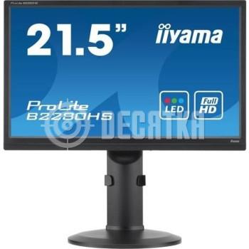 ЖК монитор Iiyama B2280HS