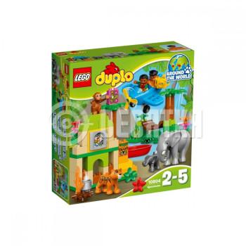 Пластмассовый конструктор LEGO DUPLO Джунгли (10804)